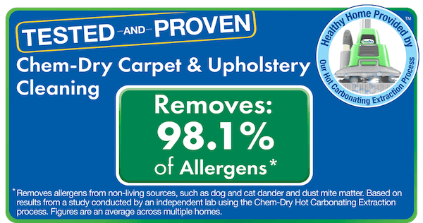 chem dry removes 98% of allergens and 89% of bacteria from carpets and upholstery